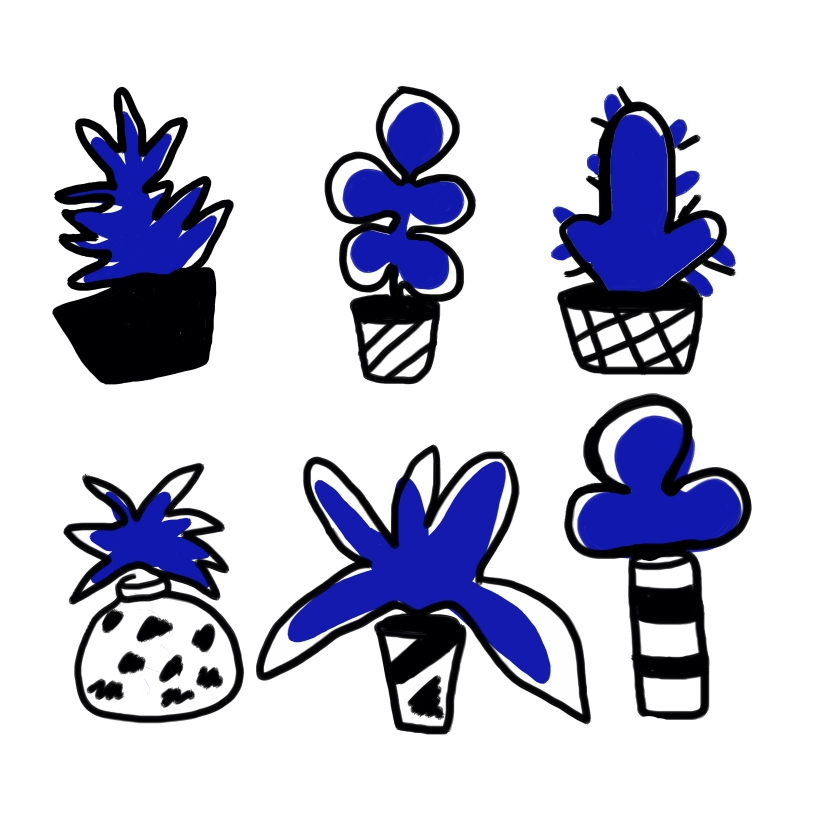 plants and vases.jpg